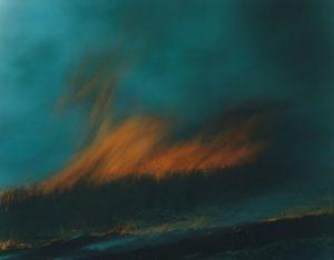 """Rinko Kawauchi,Untitled from the series """"Ametsuchi"""" (2013)"""